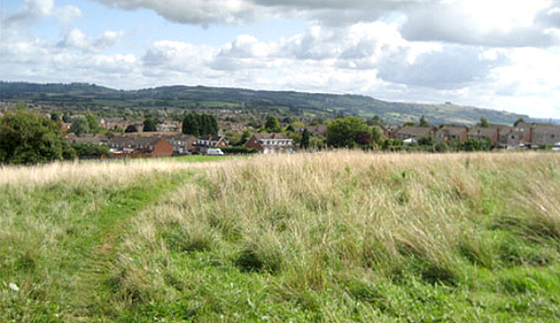 Undeveloped greenfield site